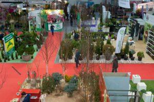 Targi Plantacote - HORTICO - Gardenia 2014 zdjęcie 12