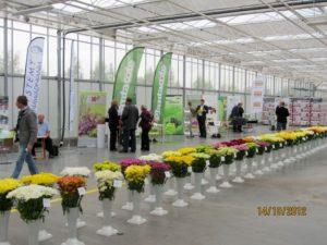 Open Days M.M. Szaj 2012 (17-10-2012)