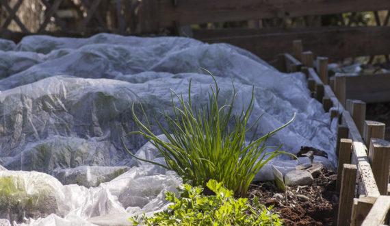 Folie i włókniny ogrodnicze
