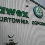 HORTICO 2008 - połączenie z AWEX Lublin