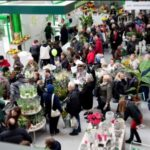 HORTICO 2011 - Opening of Gardening Center Zielone Centrum photo 3
