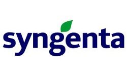 Rośliny rabatowe Syngenta FloriPro Service