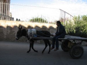 Fundamenty efektywności - szkolenie w Tunezji zdjęcie 21