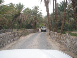 Fundamenty efektywności - szkolenie w Tunezji zdjęcie 25