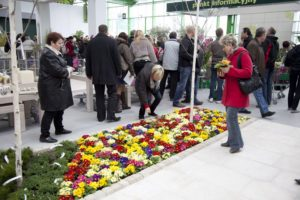 Otwarcie Galerii Ogrodniczej Zielone Centrum zdjęcie 05