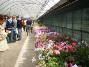 Dni Otwarte Plantpol 2011 zdjęcie 09