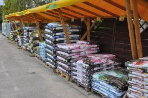 Centrum Ogrodnicze PNOS Ożarów - zdjęcie 6