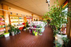 Centrum Ogrodnicze PNOS Warszawa - zdjęcie 5